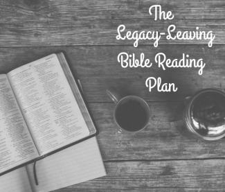 bible reading plan image