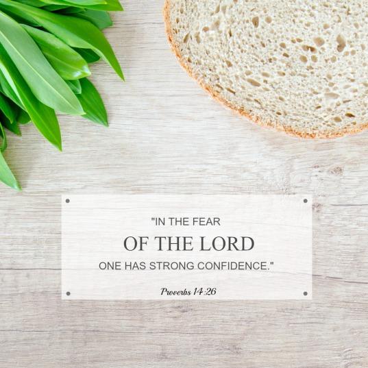 Proverbs 14
